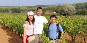 Vin et culture en Provence